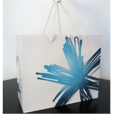 Paper bag with spot color printing(72049)