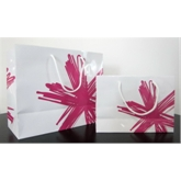 Paper bag with spot color printing(72052)